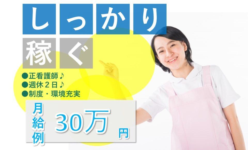 看護師│住宅型有老ホーム│施設見学可│月収30万円【求人ID:15515-ns-f-ns-nas】
